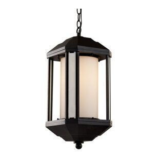 TransGlobe Lighting 1-Light Outdoor Hanging Lantern