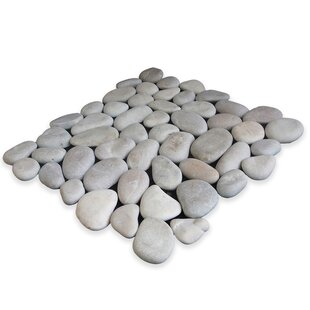 Classic Pebble Random Sized Natural Stone Pebble Tile in Tan