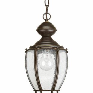 Bargain Triplehorn  1-Light Classic Hanging Lantern By Alcott Hill