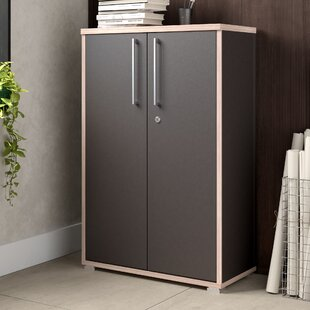 Lockable Storage Cabinet By Mercury Row