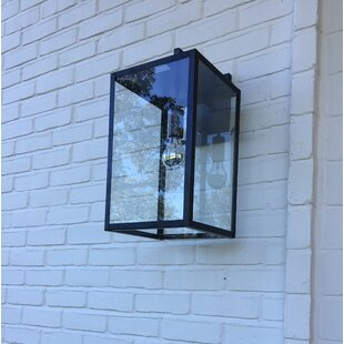 Escamilla 1-Light Wall Lantern