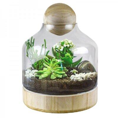 Mistana Gisselle Recycled Glass Terrarium Wayfair