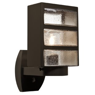 Latitude Run Donnie 1-Light Outdoor Aluminum Semi Flush Mount