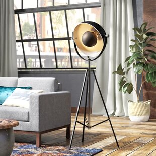 Coupon Castletroy 61 Tripod Floor Lamp By Trent Austin Design