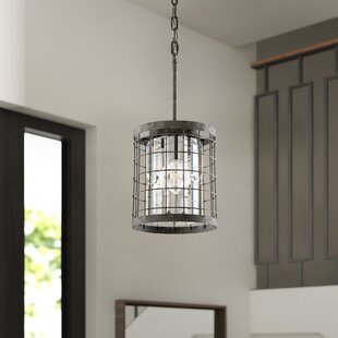 Chilson Crystal 1-Light Cylinder Pendant by Brayden Studio