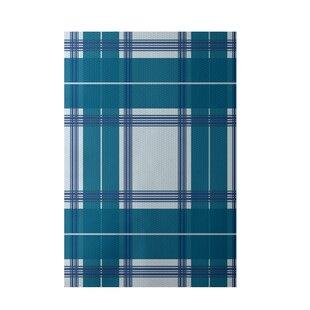 Geometric Hand-Woven Light Blue/Teal Indoor/Outdoor Area Rug