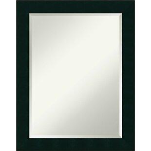 Winston Porter Hastings Bathroom Accent Mirror