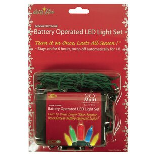 The Holiday Aisle Trad 20 Light String Lights