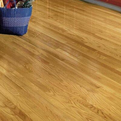 "Dundee 2-1/4"" Solid Oak Hardwood Flooring Bruce Flooring Finish: Seashell"