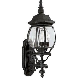Triplehorn 3-Light Outdoor Sconce by Alcott Hill