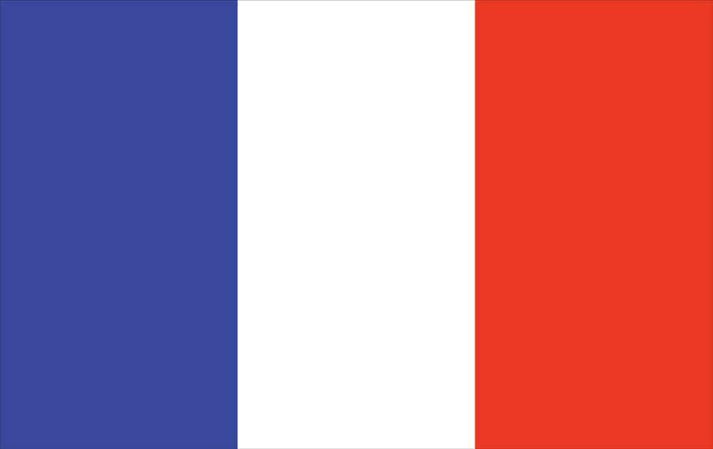 U S Flag Store France World Nylon 36 X 60 In House Flag Wayfair