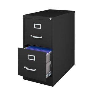 Symple Stuff Kenya 2-Drawer Metal Letter Size Vertical Filing Cabinet