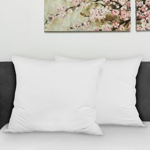 throw pillows decorative pillows you ll love