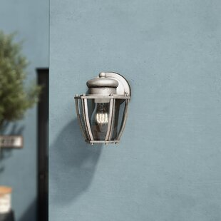 Check Prices Capucine 1-Light Outdoor Wall Lantern By Zipcode Design