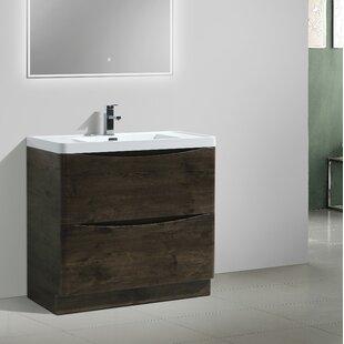 Ruelas Free Standing Modern 35 inch  Single Bathroom Vanity Set