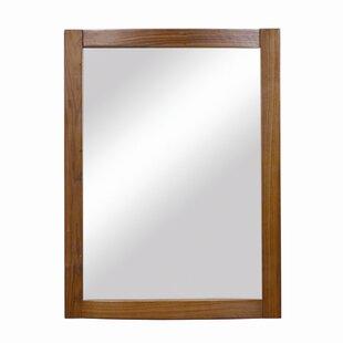 DECOLAV Gavin Accent Mirror