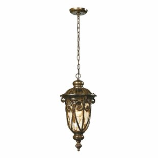 Bargo 1-Light Outdoor Hanging Lantern by Fleur De Lis Living