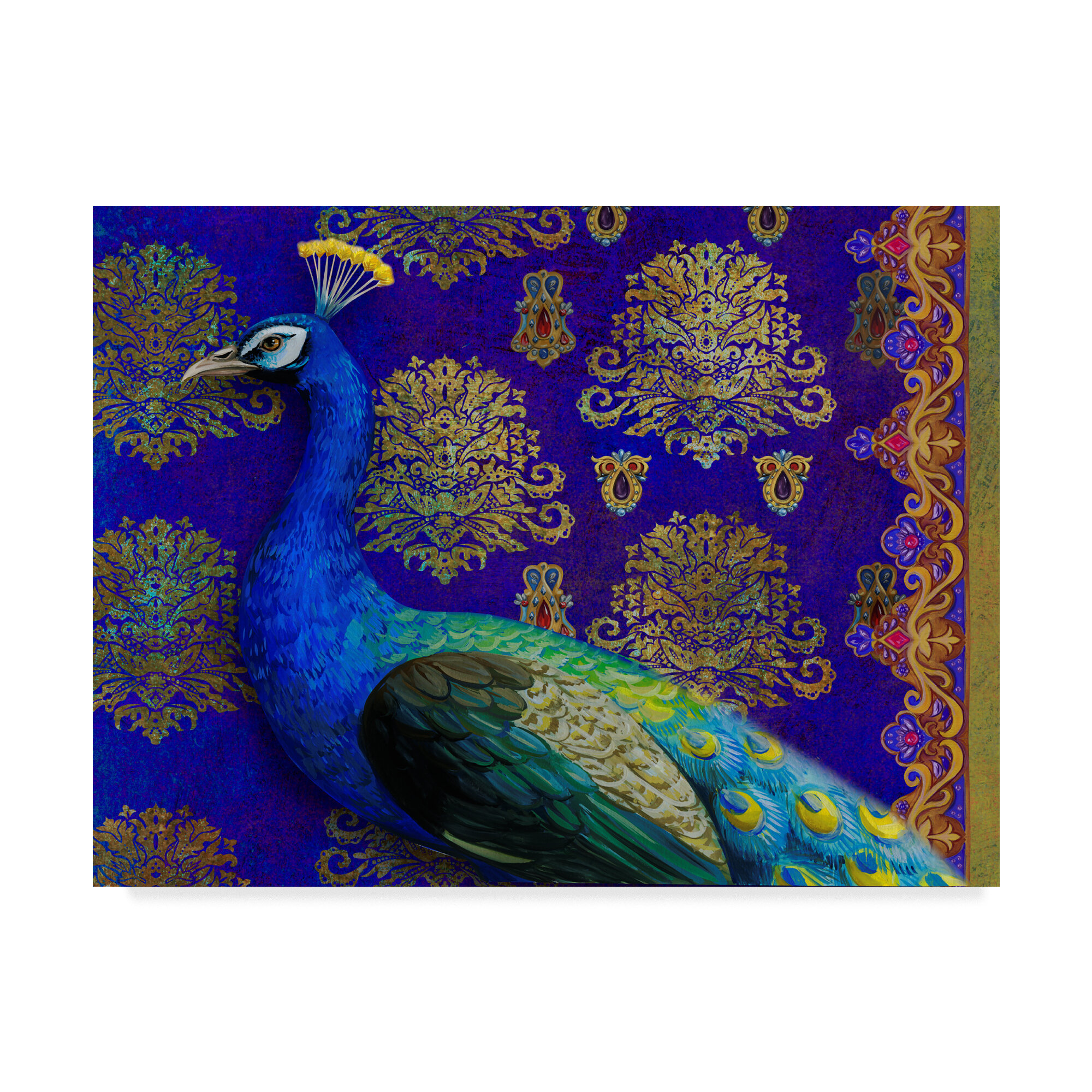 Trademark Art Indian Peacock Graphic Art Print On Wrapped Canvas Reviews Wayfair