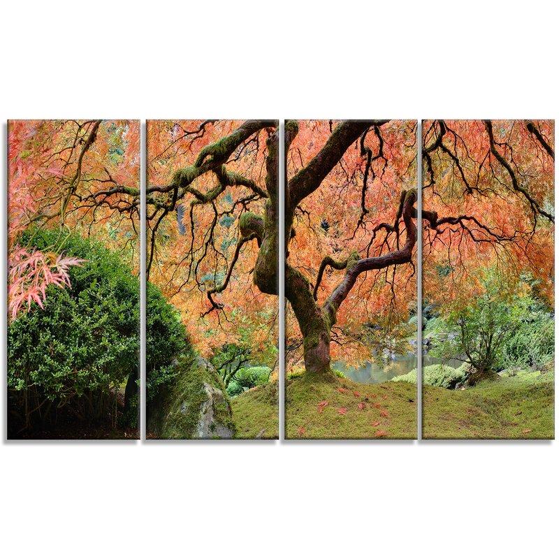 Designart Old Japanese Maple Tree Landscape 4 Piece Photographic Print On Wrapped Canvas Set Wayfair