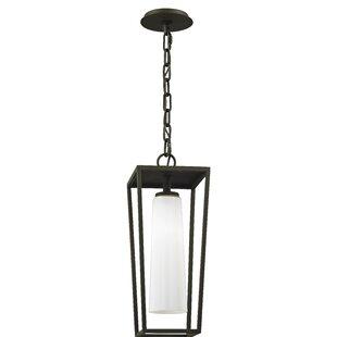 Union Rustic Oaks 1-Light Outdoor Hanging Lantern