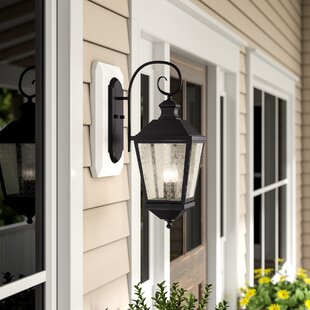 Birch Lane™ Hillside 2-Light Outdoor Wall Lantern