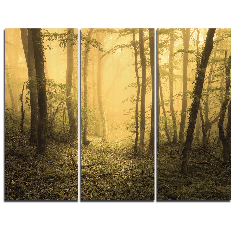 Designart Trail Through Yellow Foggy Forest 3 Piece Graphic Art On Wrapped Canvas Set Wayfair