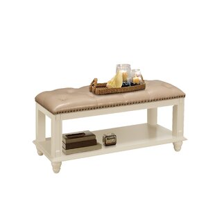 Darby Home Co Daley Leather Storage Bench