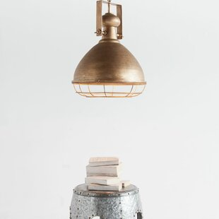 Williston Forge Hallam 1-Light Bell Pendant