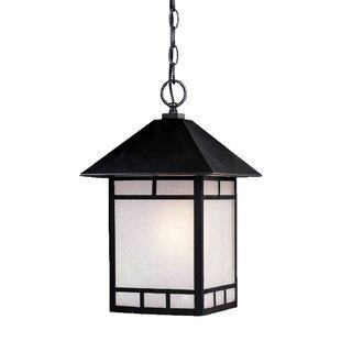 Loon Peak San Pablo 1-Light Outdoor Hanging Lantern