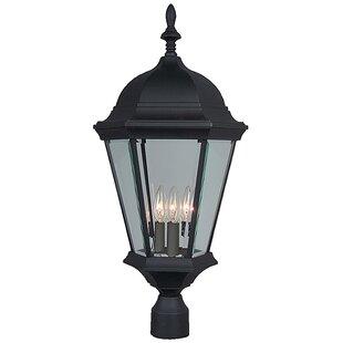 Oakhill 3-Light Matte Black Aluminum Lantern Head by Charlton Home
