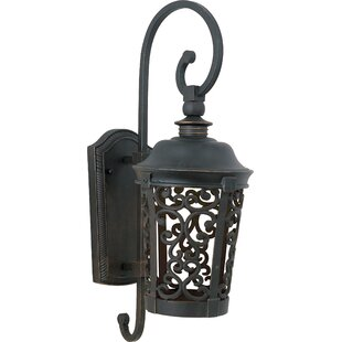 Affordable Cantrell Dark Sky LED Outdoor Wall Lantern By Fleur De Lis Living