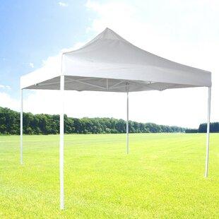10 Ft. W x 10 Ft. D Steel Pop-Up Canopy by Zenport