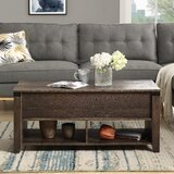 Antarious Lift Top Coffee Table with Storage by Red Barrel Studio®