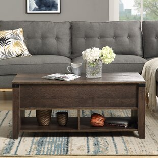Alejos Lift Top Coffee Table with Storage by Ebern Designs