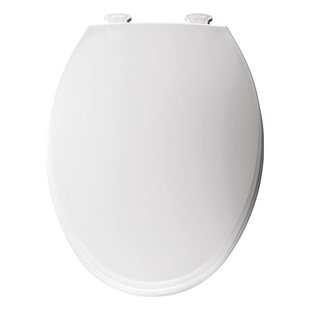 Trumbull Church Lift Off Plastic Elongated Toilet Seat
