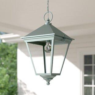 Hugh 1 Light Outdoor Hanging Lantern By Ophelia & Co.