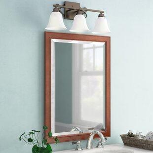 Bathroom/Vanity Mirror by Birch Lane?