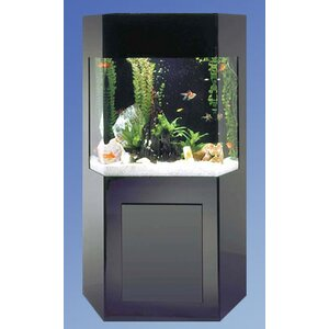 Aqua 50 Gallon Custom Shadow Box Aquarium Kit