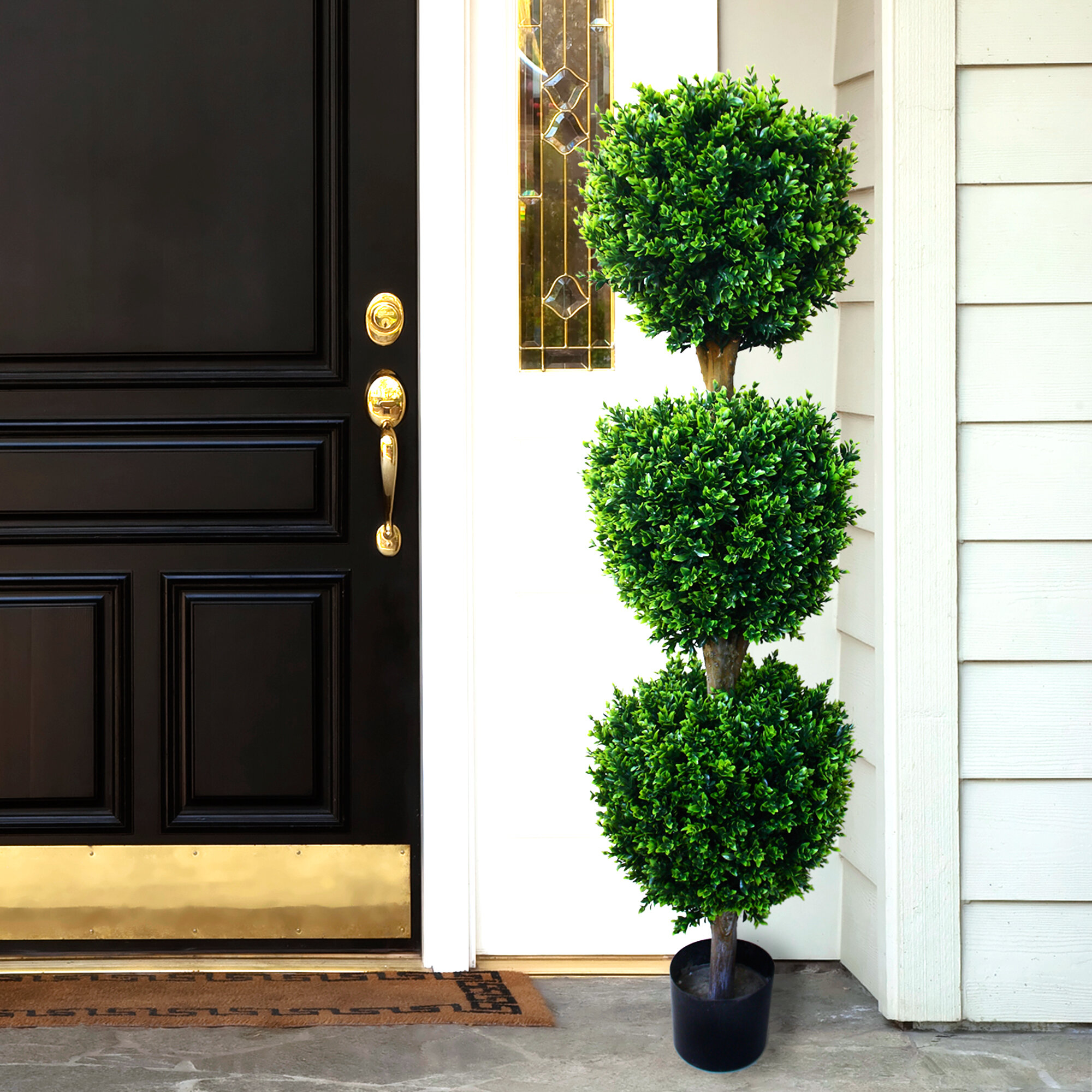 Darby Home Co Brooklyn Floor Boxwood Topiary In Pot Reviews Wayfair