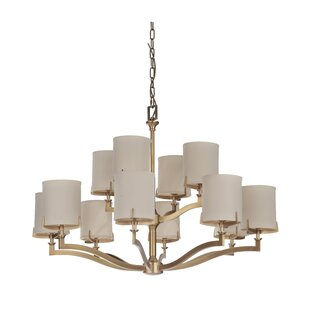 Darby Home Co Evenson 12-Light Shaded Chandelier