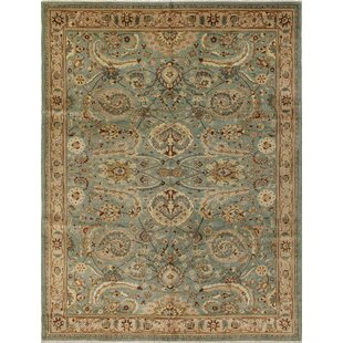 Find a Clerkin Hand Knotted Rectangle Wool Green/Beige Area Rug ByAstoria Grand