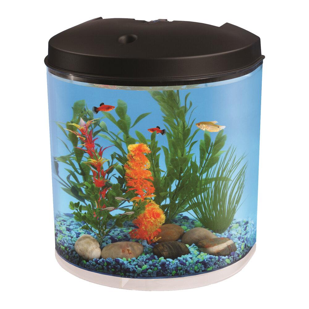 Fish Tanks Aquariums You Ll Love In 2019 Wayfair Ca