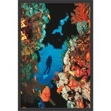 coral-reef-picture-frame-photograph-print-on-paper