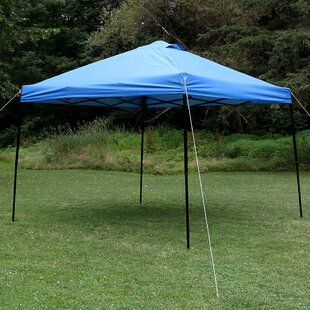 Denning 10Ft.Wx10Ft.DSteel Pop-Up Canopy by Freeport Park