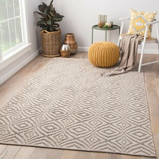 Arbor Handwoven Flatweave Taupe Indoor/Outdoor Area Rug