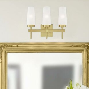 Conkling 3-Light Vanity Light by Mercer41