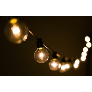 Reviews Globe String Lights By Hometown Evolution, Inc.
