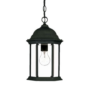 Price Check Pruitt 1-Light Outdoor Hanging Lantern By Charlton Home