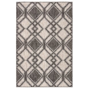 Samba Trellis Black/Ivory Indoor/Outdoor Area Rug