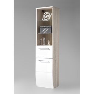 Sayer 39cm X 163cm Wall Mounted Cabinet By Mercury Row